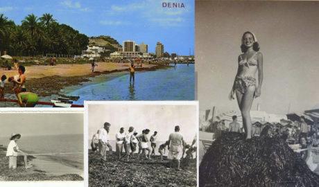 Siempre hubo algas en las playas de Dénia (y dunas)