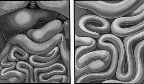 """""""Contraconsejos de Antiayuda"""": La década del intestino"""