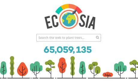 Ecosia i el canvi climàtic
